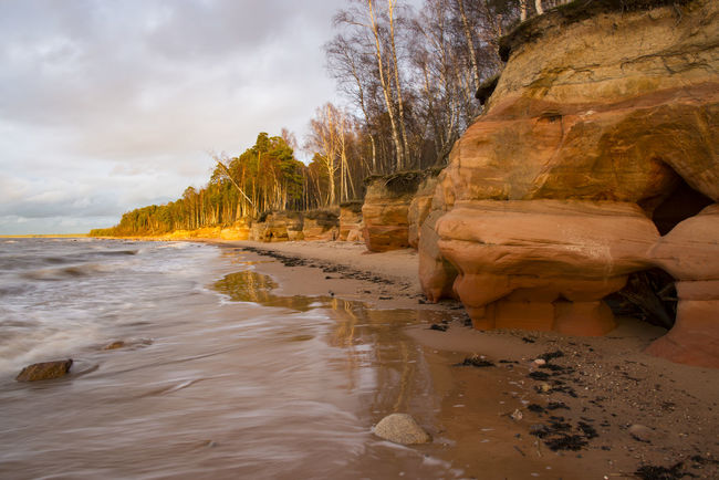 sandstone cliffs with caves at coastline Calm Caves, Clouds, Coast, Coastline, Sand, Sandstone, Sandstone Cliffs, Sea, Shore, Stone, Stones, Sunset, Tree, Trees, Water, Waves Cloud Cloud - Sky Cloudy Coastline Day Idyllic Nature No People Non Urban Scene Non-urban Scene Outdoors Remote Rock - Object Rock Formation Scenics Shore Sky Tourism Tranquil Scene Tranquility Travel Destinations Tree Water
