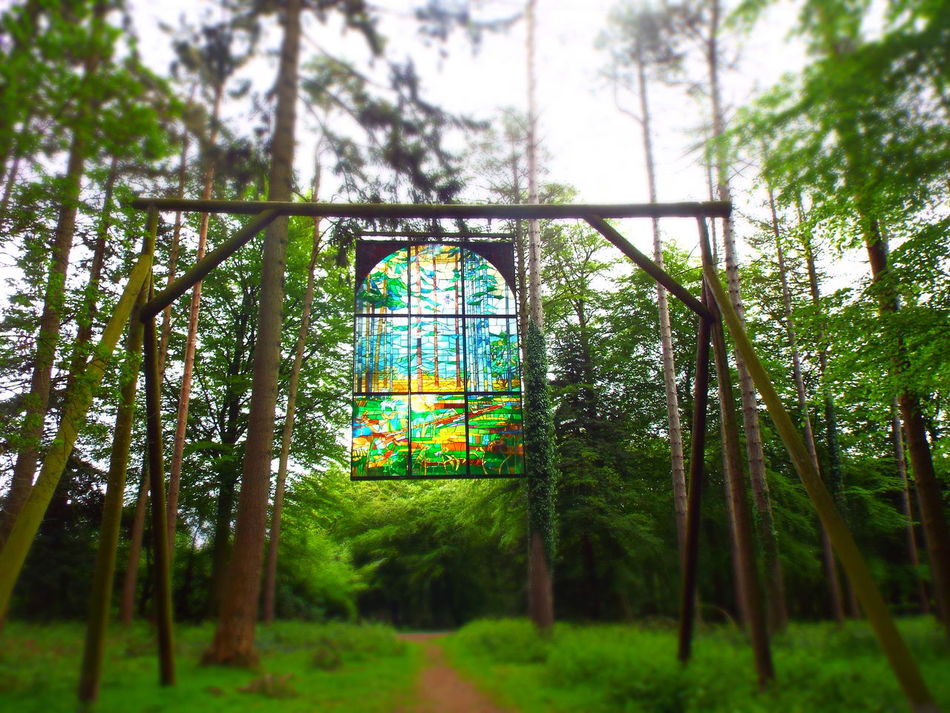 Day Diminishing Perspective Empty Forest Of Dean Grass Green Green Color Growth Lush Foliage Nature No People Outdoors Plant Sculpture Sculpture Trail Selective Focus Sky Stained Glass Stained Glass Window The Way Forward Tranquil Scene Tranquility Tree