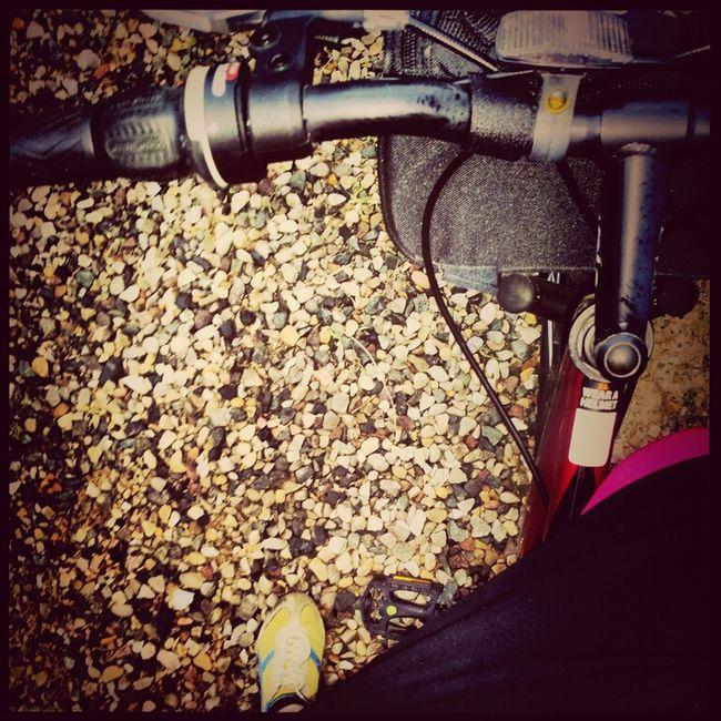 Bike Week Early Morning Bike Ride