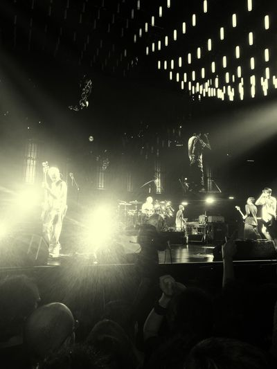 Californication Love ♥ Funk Red Hot Chili Peppers Bologna Flea❤ wonderful night!!