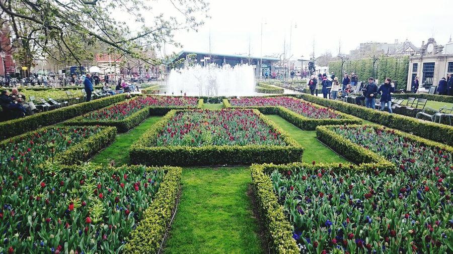 Amesterdam Garten Beautiful ♥ Nice City