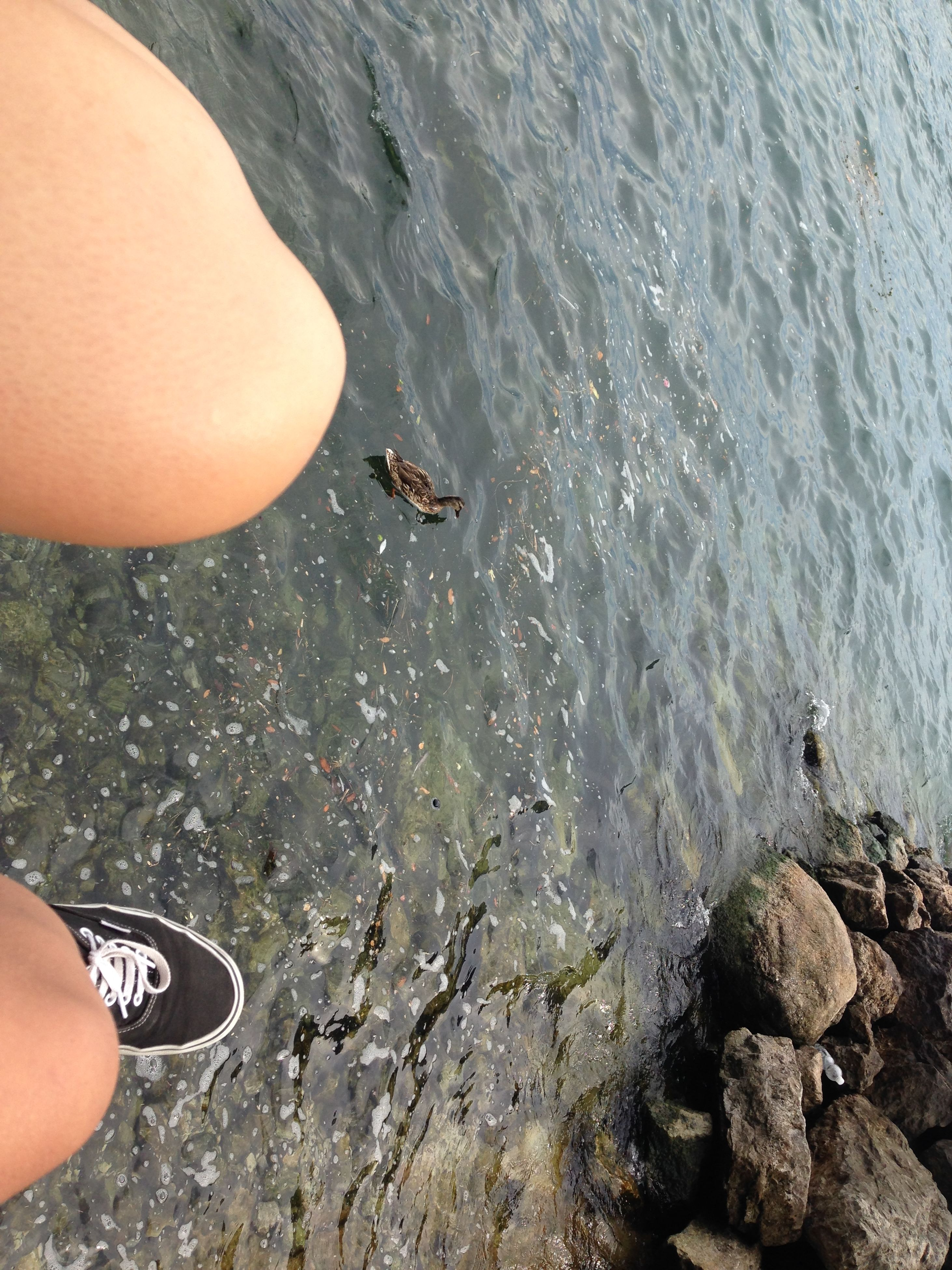 water, personal perspective, person, low section, leisure activity, lifestyles, high angle view, sea, men, unrecognizable person, nature, beach, human foot, part of, outdoors, day, vacations
