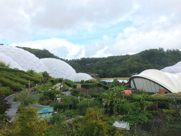 Edenproject Eden St Austell Cornwall Biomes Garden Plants And Flowers