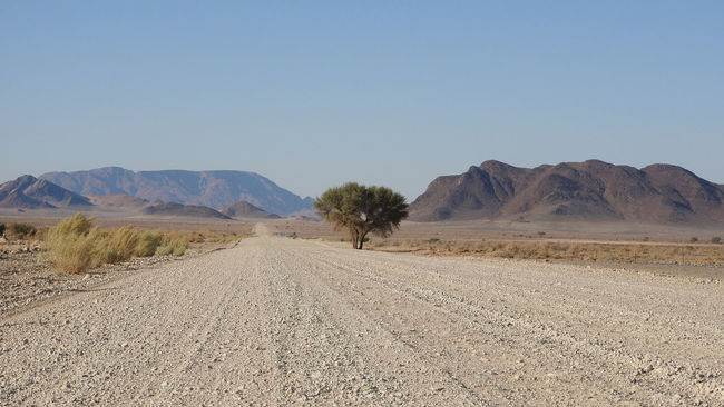 Landcape in Southern Namibia, Africa Acacia Tree Arid Arid Landscape Clear Sky Mountain Mountain Range Nature Non-urban Scene Outdoors Remote Road Roadtrip Scenics The Way Forward Tranquil Scene Tranquility