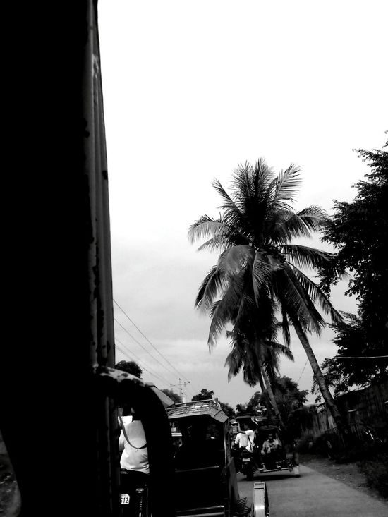 Gloomy Friday weather. Off to work. Outdoors Public Transportation Province Gloomy