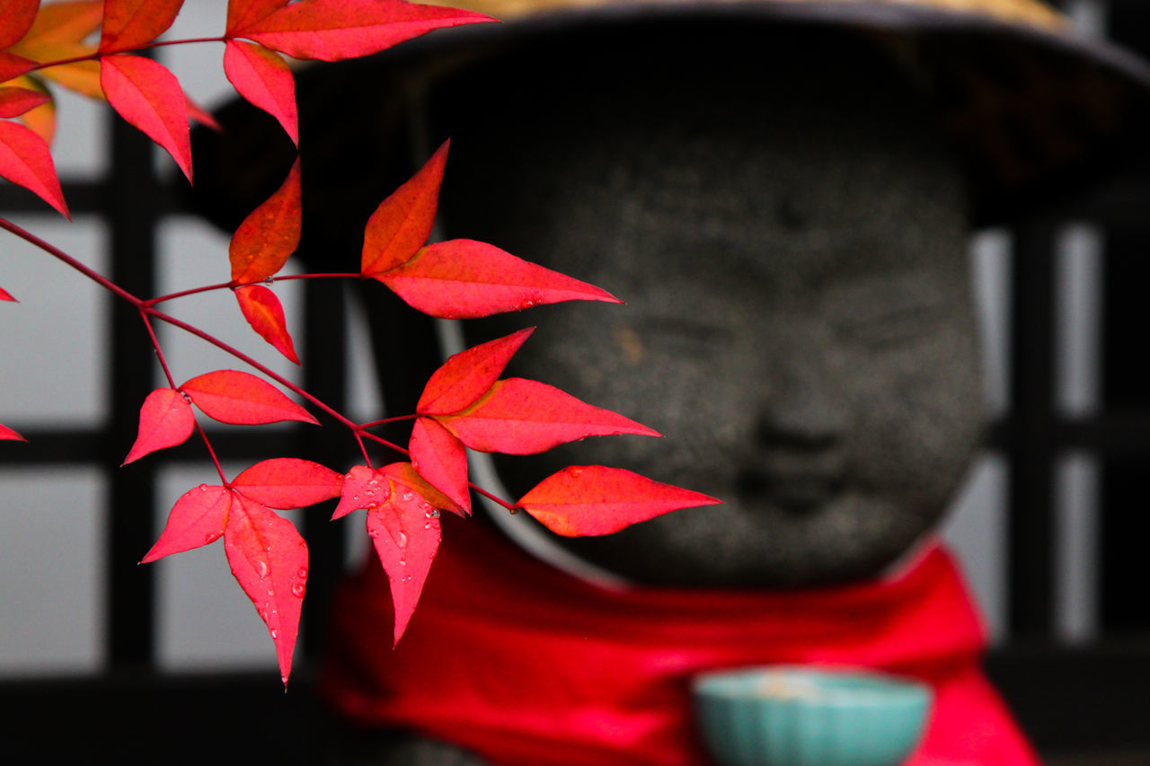 Close-Up Of Autumn Leaves With Statue Of Monk