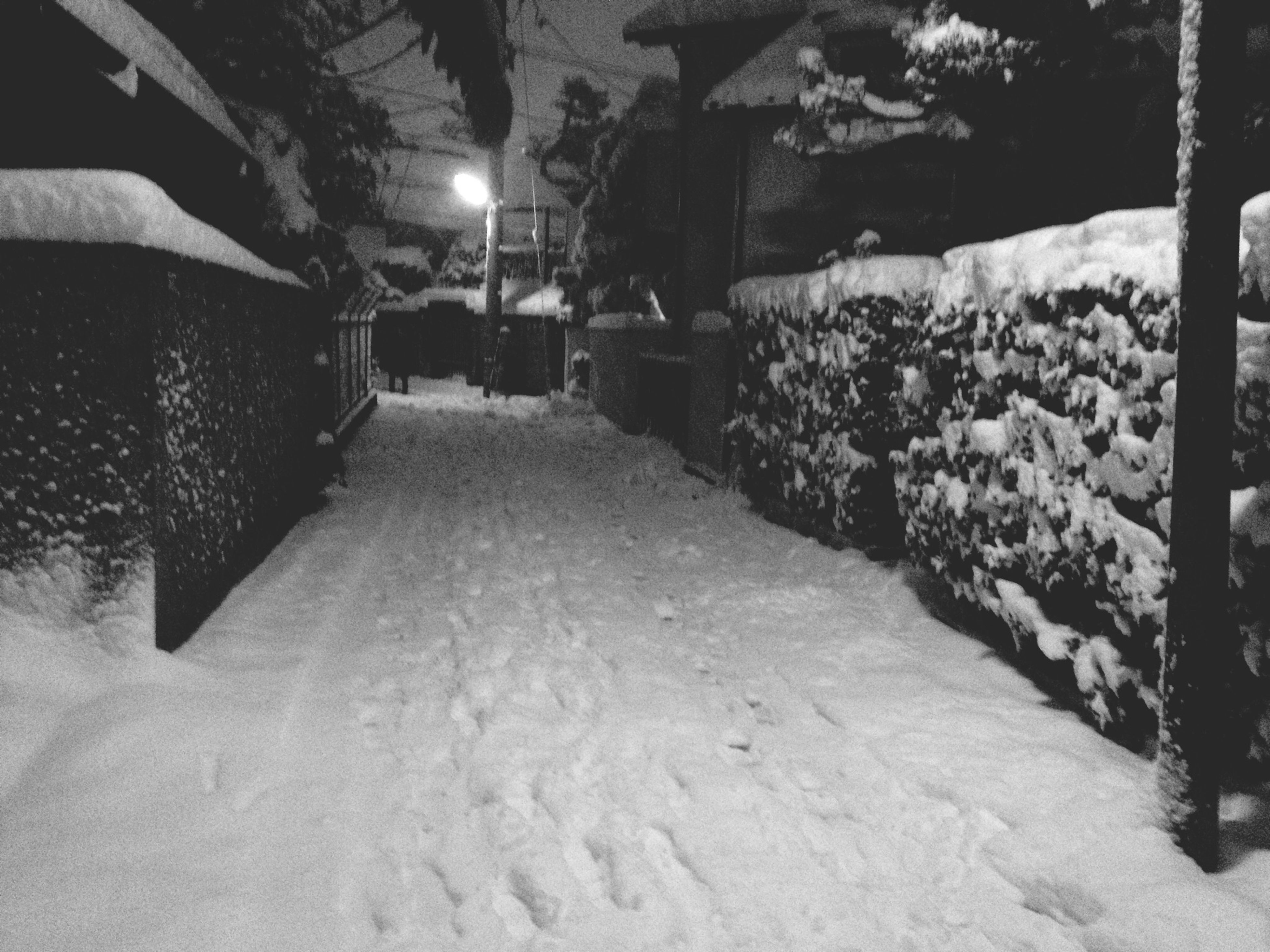 night, illuminated, snow, winter, lighting equipment, the way forward, street light, built structure, cold temperature, architecture, covering, street, empty, footpath, building exterior, tree, outdoors, no people, season, covered