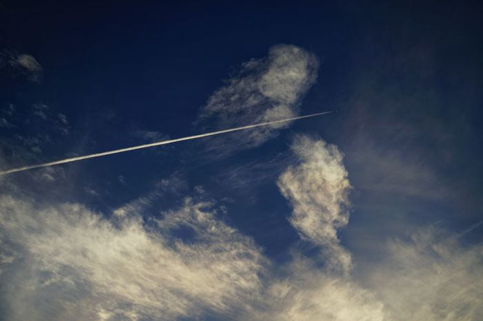 ✈Capture The Moment Blue Sky Low Angle View Contrail Vapor Trail Sky And Clouds Lookingup Nature Depth Of Field Tranquility Fine Art Getting Inspired Scenics Fragility Composition Transportation Day Outdoors Snapshots Of Life Full Frame Detail Sigma EyeEm Best Shots 17_07 EyeEmNewHere EyeEm Selects