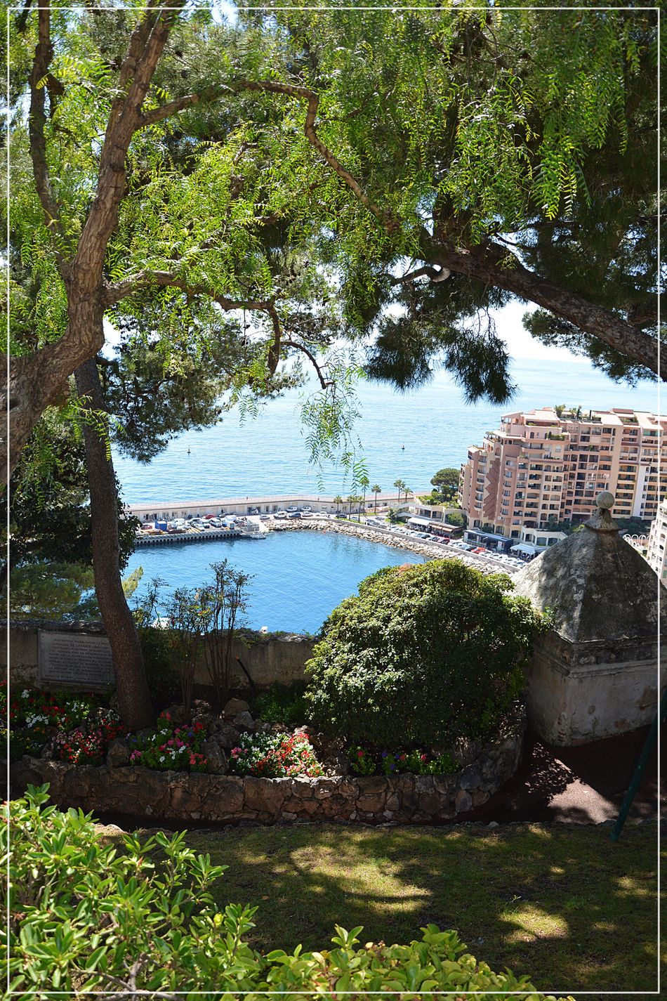 Provencealpescôtedazur Côte D'Azur Monaco Tree Water Building Exterior Architecture Built Structure Outdoors No People Day Nature Growth Travel Destinations Sea Scenics Plant Sky Branch Beauty In Nature Nautical Vessel Cityscape City