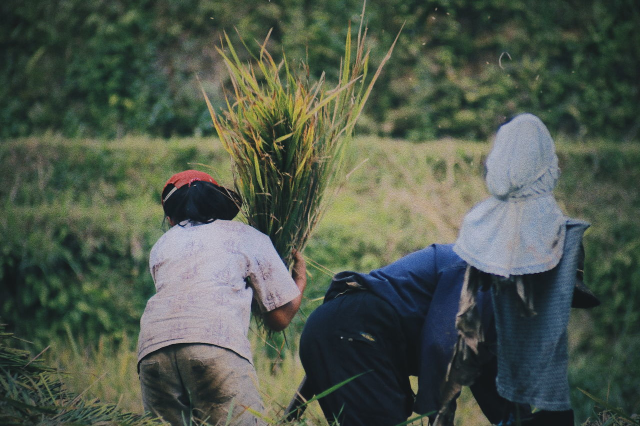 Farmer.. Real People Rear View Field Working Lifestyles Agriculture Two People Men Outdoors Women Day Nature Occupation Togetherness Growth Rural Scene Farmer Childhood Beauty In Nature Adult Humaninterestindonesia Activity Humaninterestphotography Humaninterest Traditional