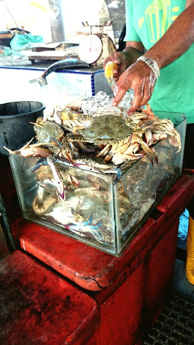 Freshness Food And Drink Seafoods Seafood Lovers Culture Fresh On Eyeem