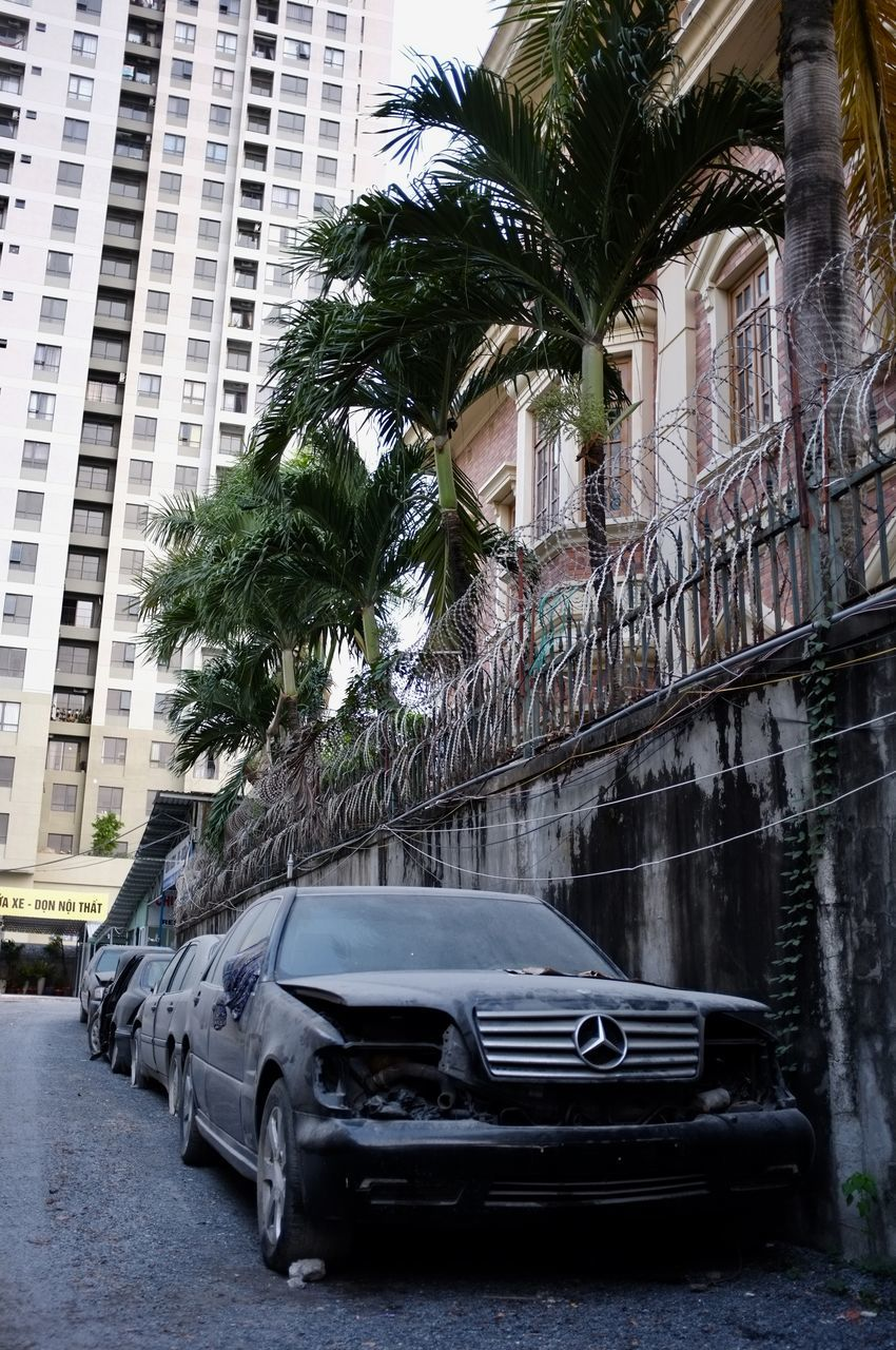 car, palm tree, architecture, transportation, building exterior, land vehicle, built structure, city, no people, day, outdoors
