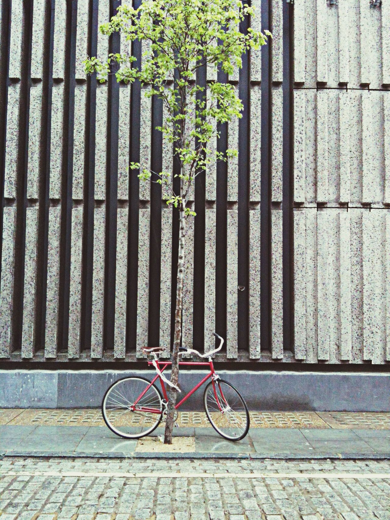 Beautiful stock photos of bike, Bicycle, Built Structure, Cobblestone, Day