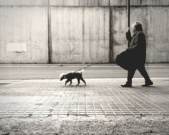untitled, just a man and a dog OpenEdit Open Edit EyeEm Best Shots EyeEm Best Shots - Black + White The EyeEm Facebook Cover Challenge Streetphotography Streetphoto_bw IPhoneography Mobilephotography Blackandwhite