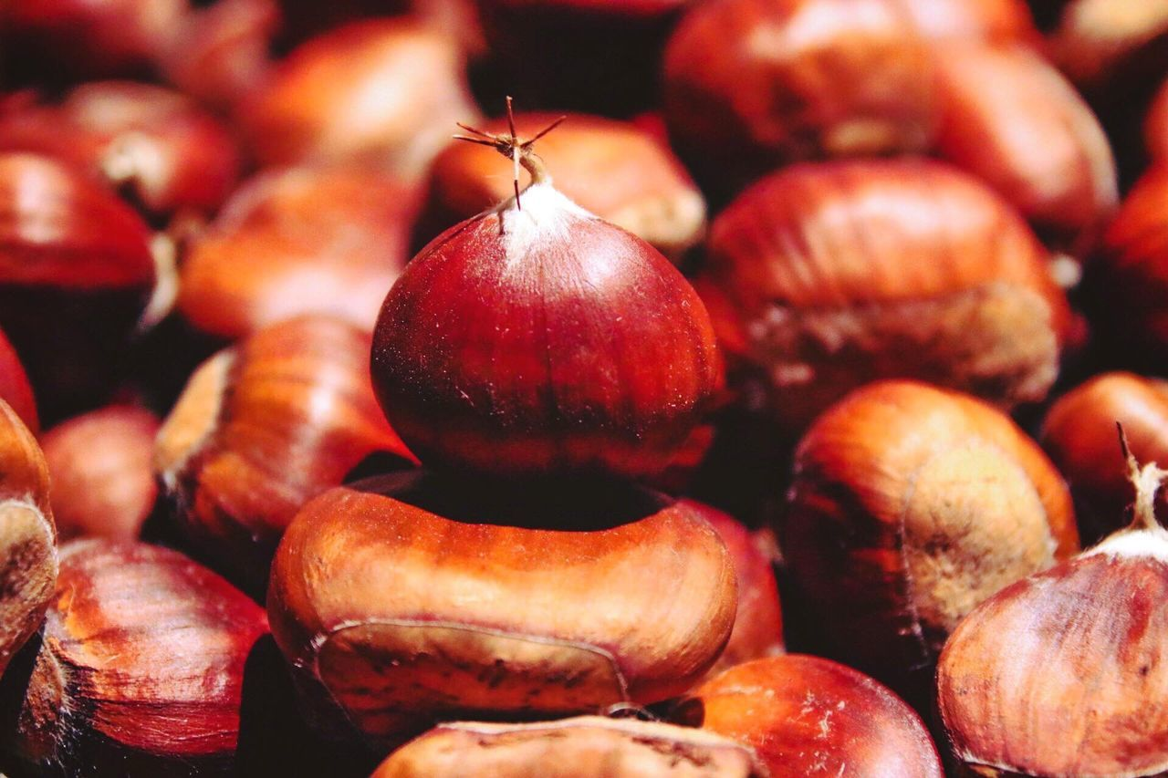 food and drink, food, healthy eating, freshness, fruit, close-up, no people, nut - food, red, focus on foreground, indoors, day