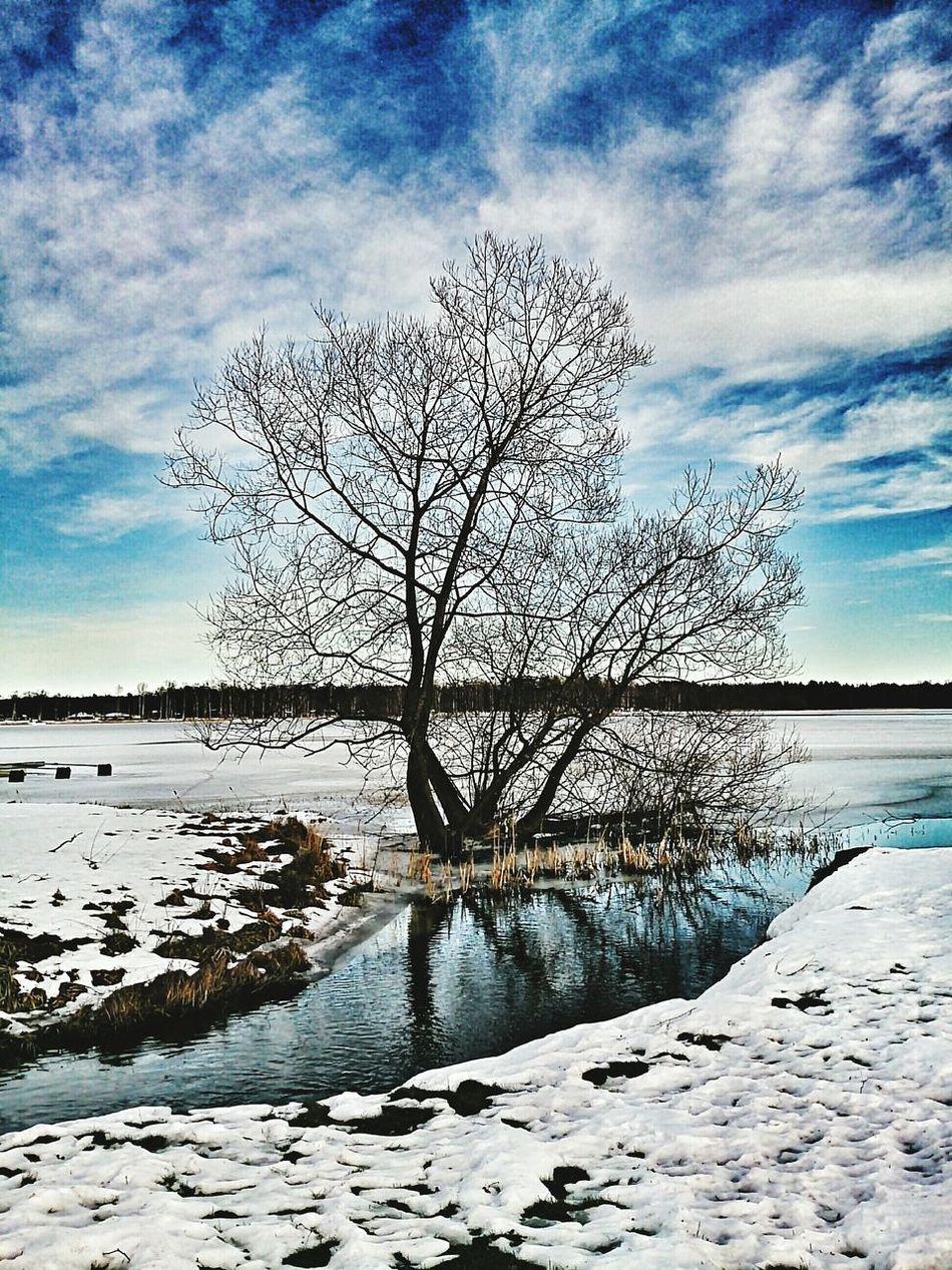 Kurd Ezidi Yezidi Småland Hultsfred Beautiful Amazing Sweden Follow Like