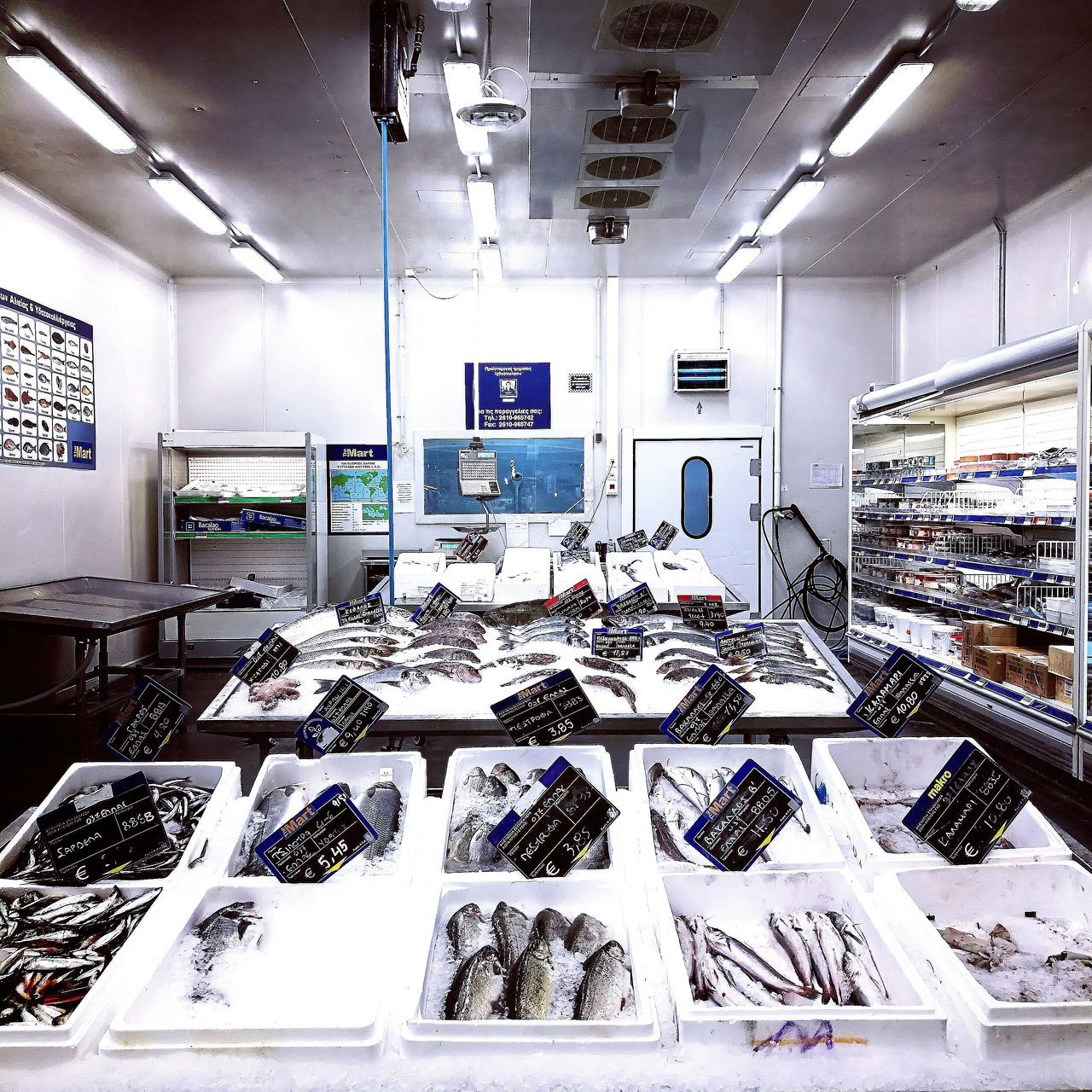 At the market. Contemporary Fishing Fish Market Holiday greece