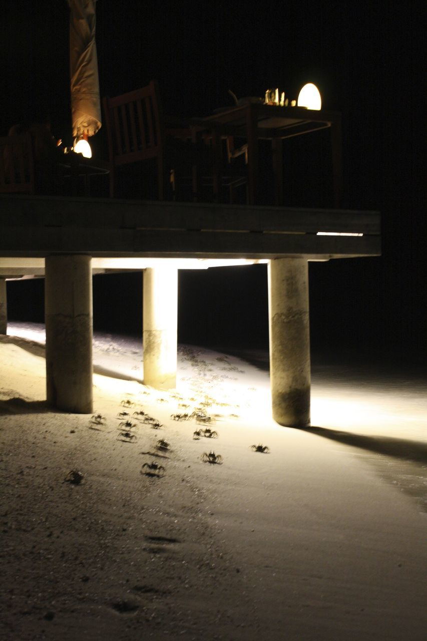 A group of crabs under a terrace
