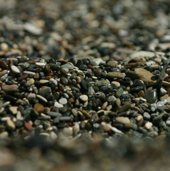 Open Apature Focus Beach Pebbles Sand Water Patterns Pebbles On A Beach Color Depth Of Field Pea Ocean Macro Ocean Beach Beauty