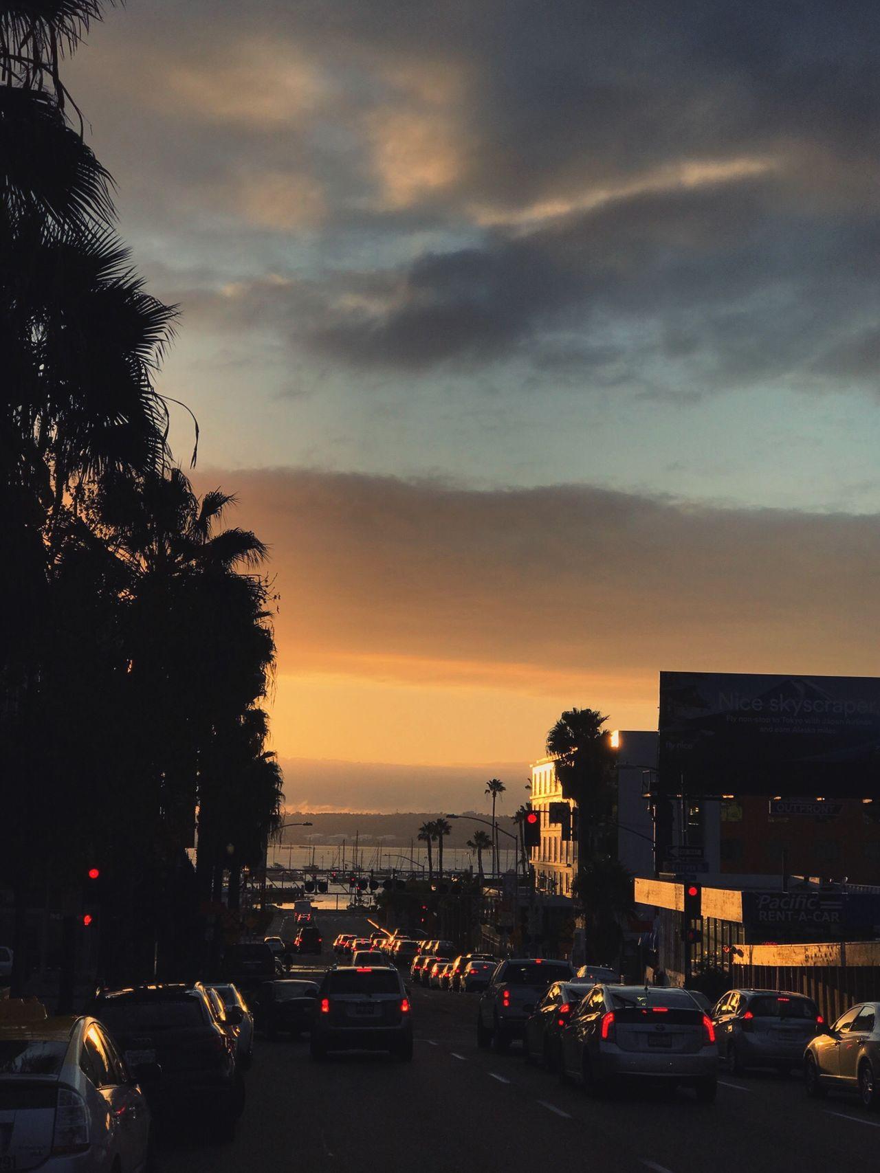 Sunset San Diego Hawthorn