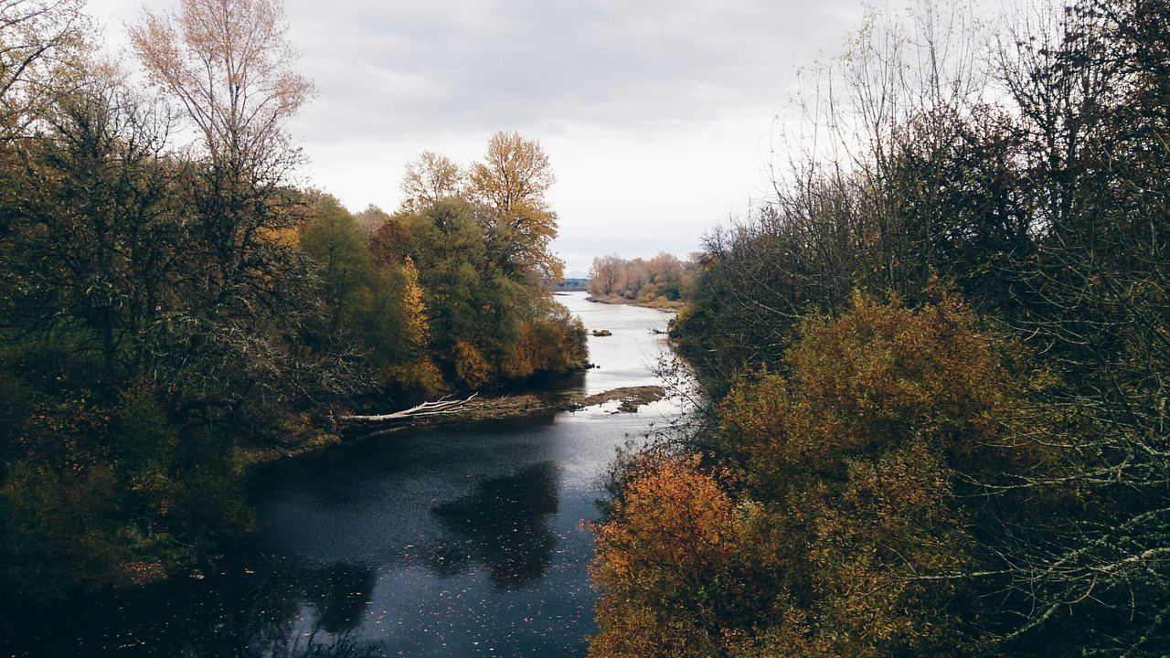 Pacific Northwest  River Water Autumn Colors Autumn Linn County