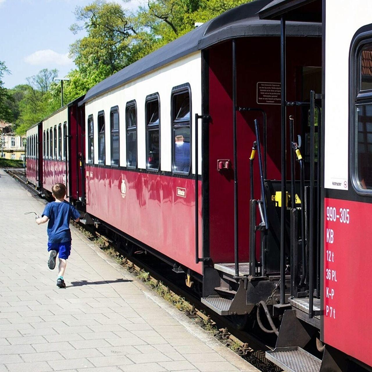 Train Molli Bad Doberan Mecklenburg-Vorpommern Mecklenburgvorpommern Summer Dampflok Trainstation Little Boy Child