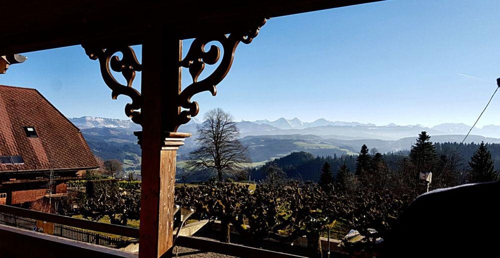 Swiss Alps Switzerland Sunday_flip Home Emmental Moosegg Tree Linde