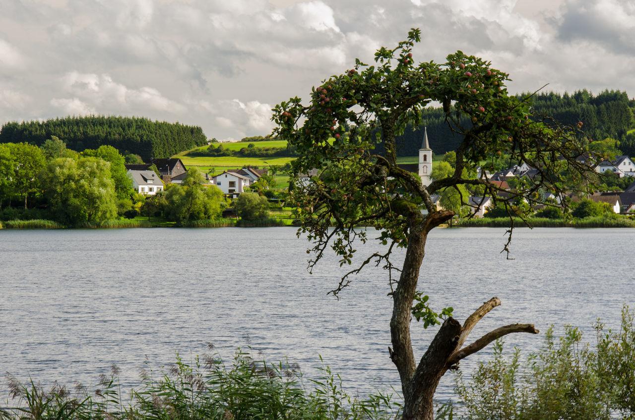 Church Cloud - Sky Durchblick Lake Maar Nature Scenics Schalkenmehren Tranquility Tree Water