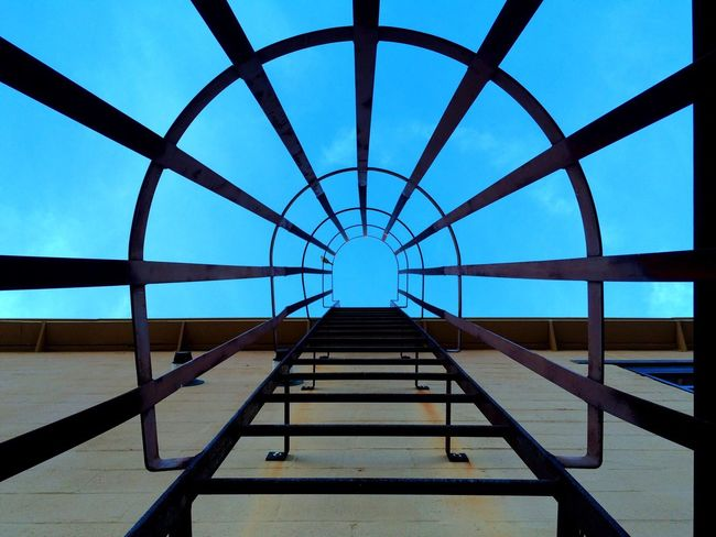 Up on the Roof. Let's Go Together Up On The Roof Ladder Steps Sky Ascending Bird Iron Built Structure Day Clear Sky Architecture The Way Forward Outdoors No People Lookingup Looking Up Look Up Blue Blue Sky Contrast Contrasting Colors Wall From The Ground Up Sunny