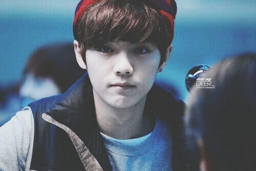 qtpie x) Luhan EXO Kpop Cute cr: owner