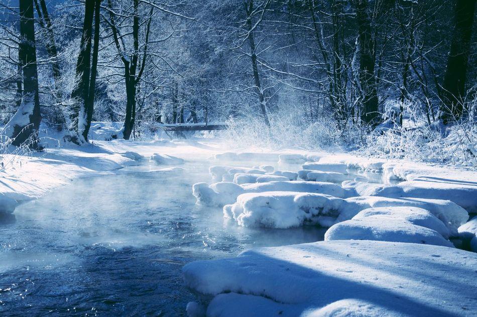 Outdoors Eyem Best Shots EyeEm Nature Lover Snow Winter Scenics Eye4photography  Nature Photography Landscape Nature Taking Photos Eyeemphoto