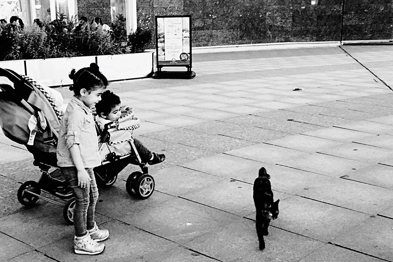Shopping Hello World Child Children Cat Baby Babygirl Baby Carriage Mall Blackandwhite Black And White Black & White Istanbul Istanbuldayasam EyeEm Gallery EyeEm Best Shots IPhoneography Iphoneonly