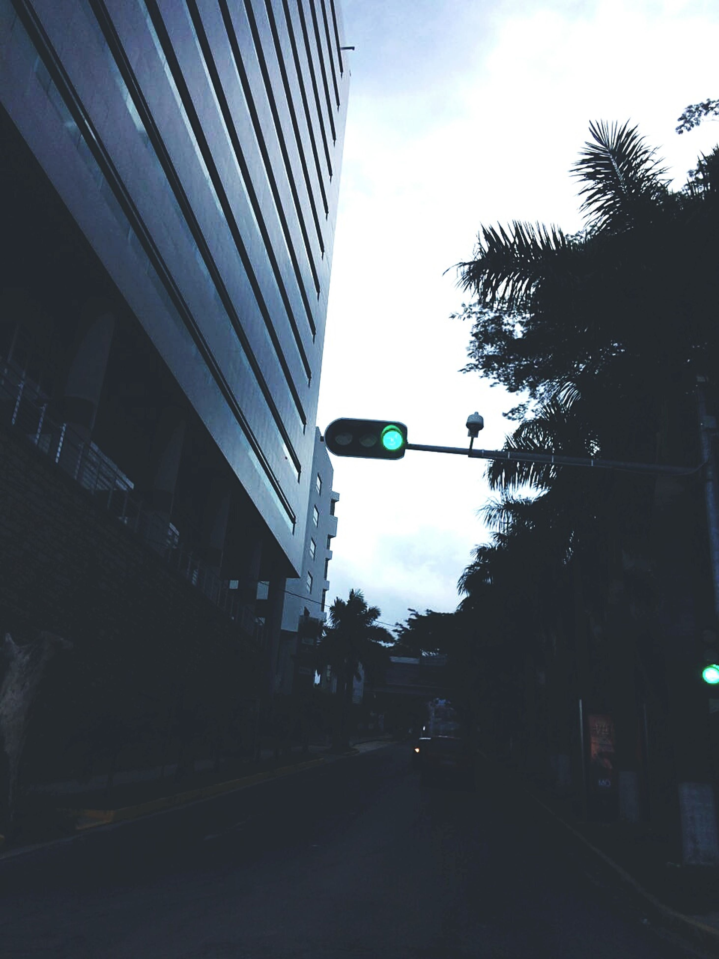 architecture, tree, street, building exterior, built structure, city, road, road signal, green light, sky, cloud - sky, the way forward, flag, outdoors, cloud, city life, day, modern, diminishing perspective