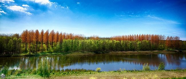 EyeEm Nature Lover Nature_collection Enjoying The View GreenScenes Beautiful Nature Eye4photography  Water_collection