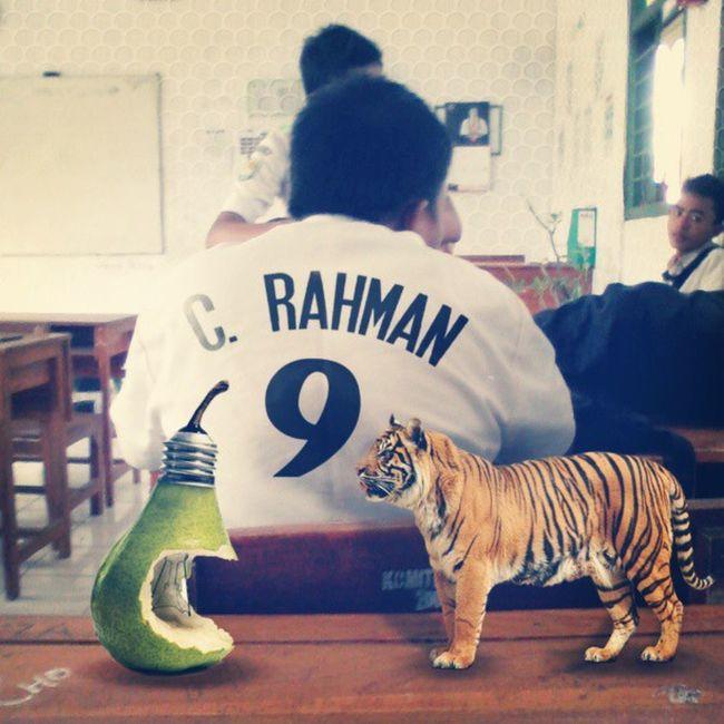 C. Rahman Funny Lucu Photoshop INDONESIA situbondo smkn1panji animal pixinyal