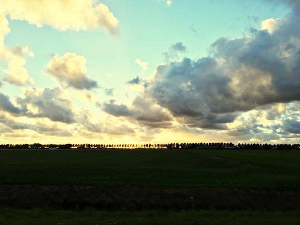 Dutch skies Field Beauty In Nature Tranquility Agriculture Tranquil Scene Nature Scenics Landscape Cloud - Sky Sky Rural Scene Idyllic No People Growth Outdoors Silhouette Day Tree Grass