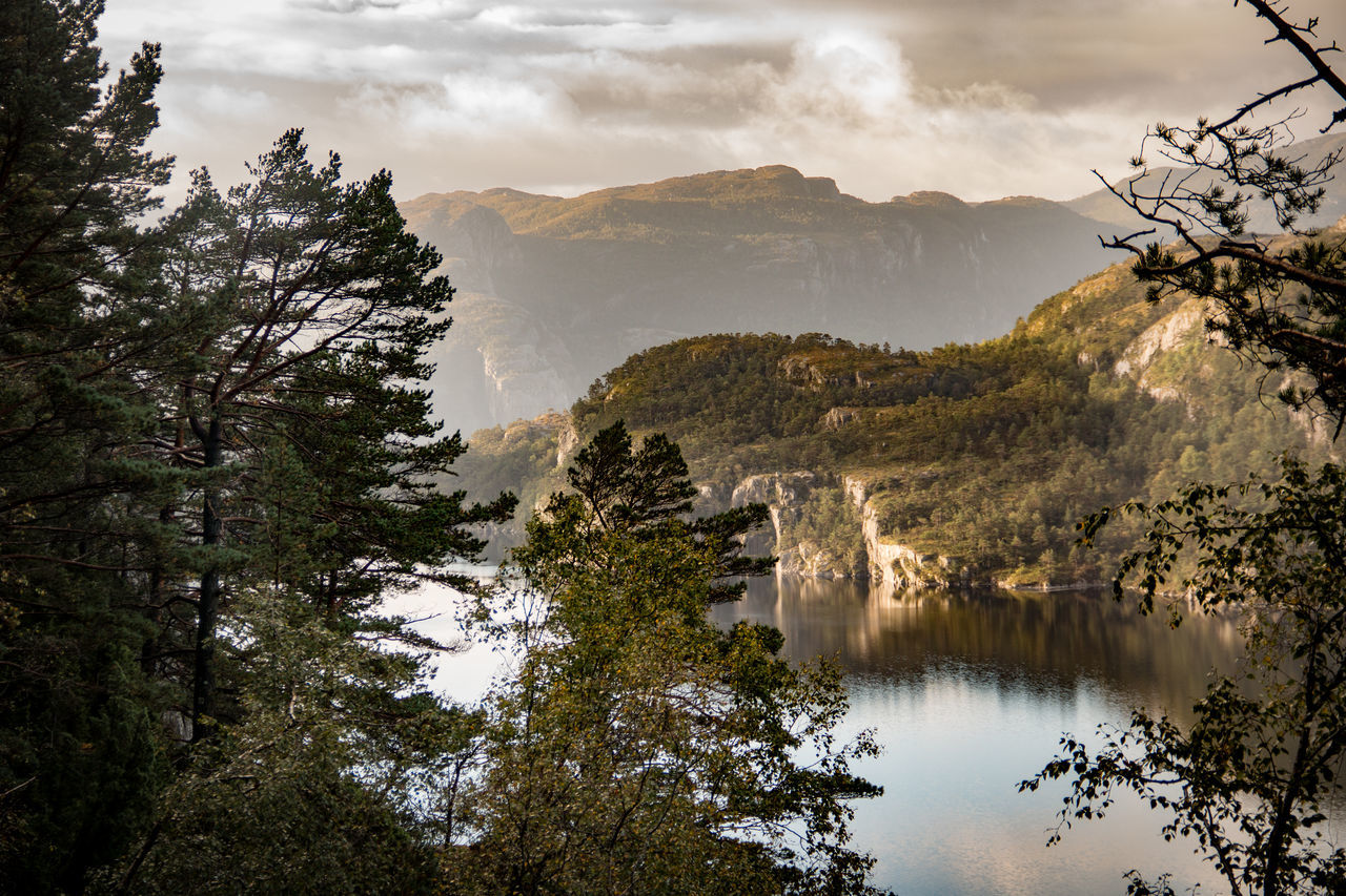 Beauty In Nature Bestseller  Day Depth Of Field Fjord Golden Hour Heaven Lysefjord Morning Morning Light Mountain Nature No People Norway Outdoors Scenics Sky Tree Wallpaper Water