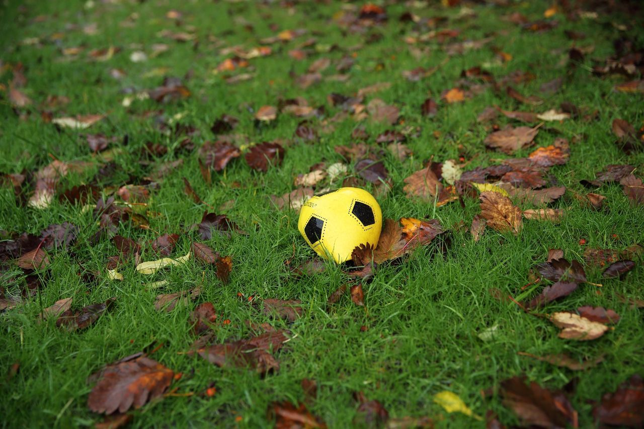 Beautiful stock photos of soccer balls, Abandoned, Autumn, Change, Day