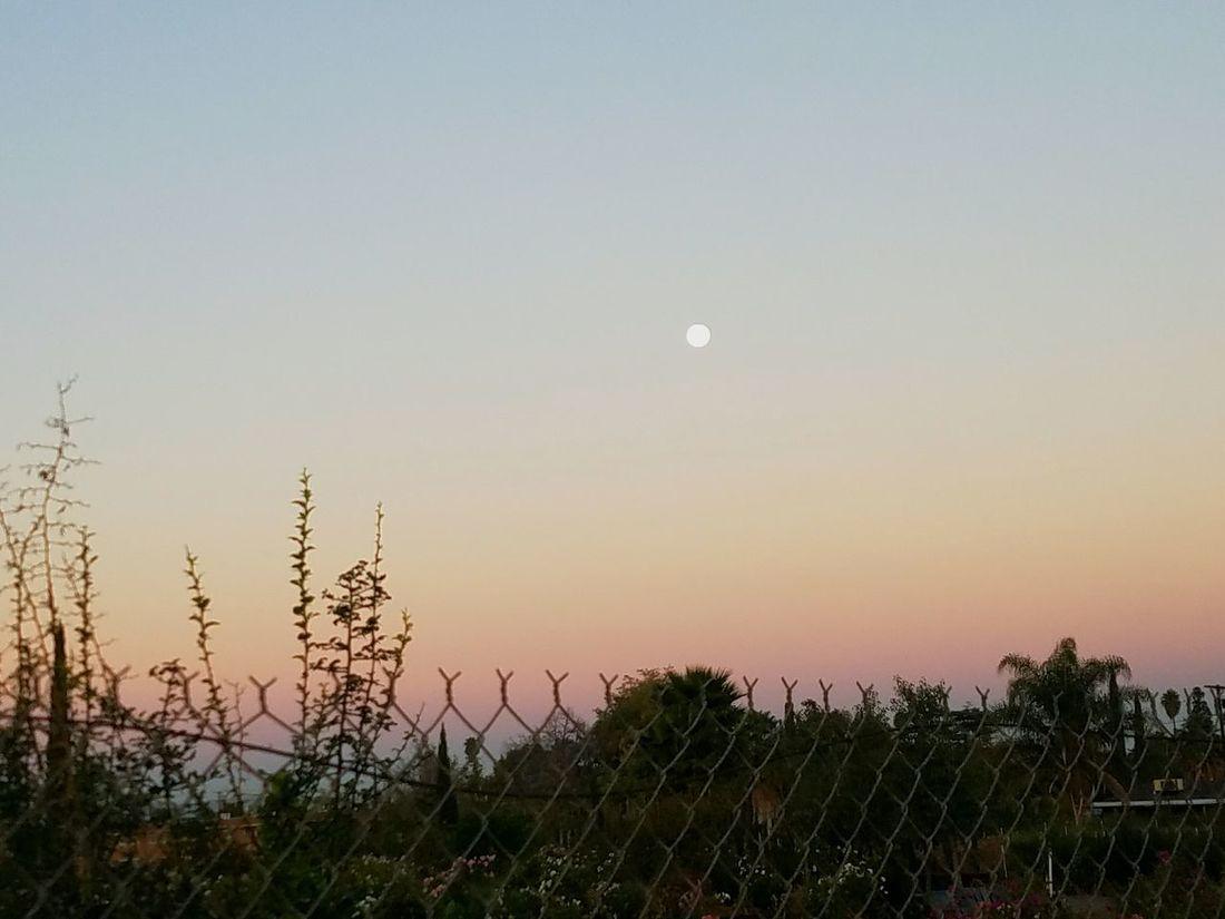 Morning Moon Sunrise Mindfulness Riverside, California Walk To Work