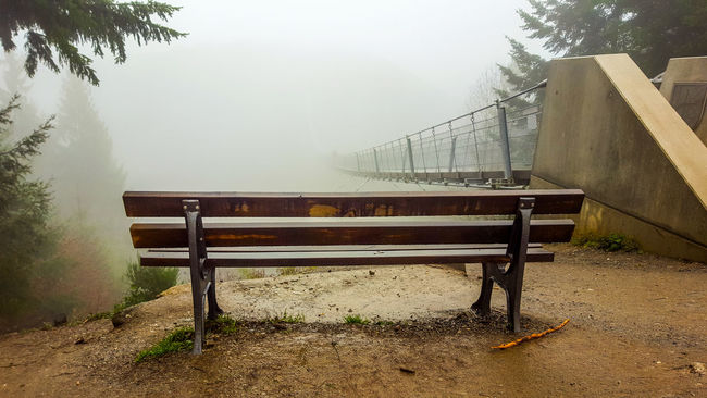 Bench Cloudy Foggy Weather Mountain View Rope Bridge Vacations View Bridge Foggy Geierlay Hunsrück Mountain Relaxation