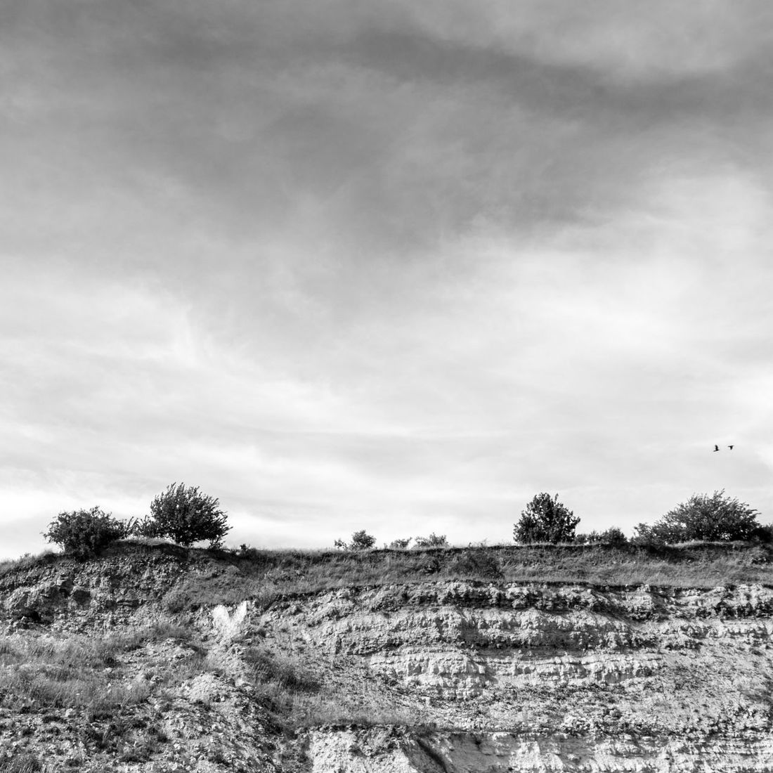 B&w Beauty In Nature Black And White Blackandwhite Clouds Day Geology Grass Growth Landscape Levels Of Rock Lookingup Multiple Layers Nature No People Outdoors Photography Scenic Scenics Sky Sky And Clouds Stone Pit Tranquility Tree Wall
