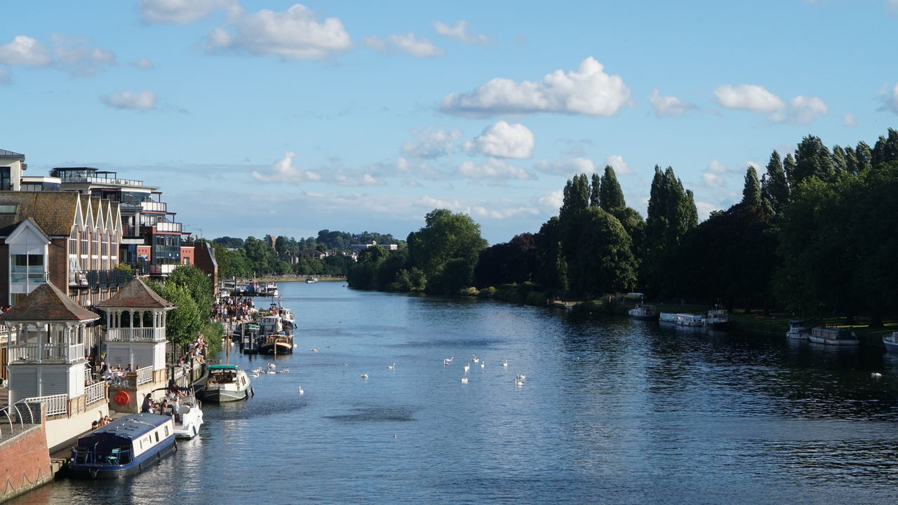View from the bridge. Kingston upon Thames Tree Water Architecture Travel Destinations City Lake Cloud - Sky Harbor Cityscape Reflection Lake Sky Day Waterfront Kingston Upon Thames Bridge
