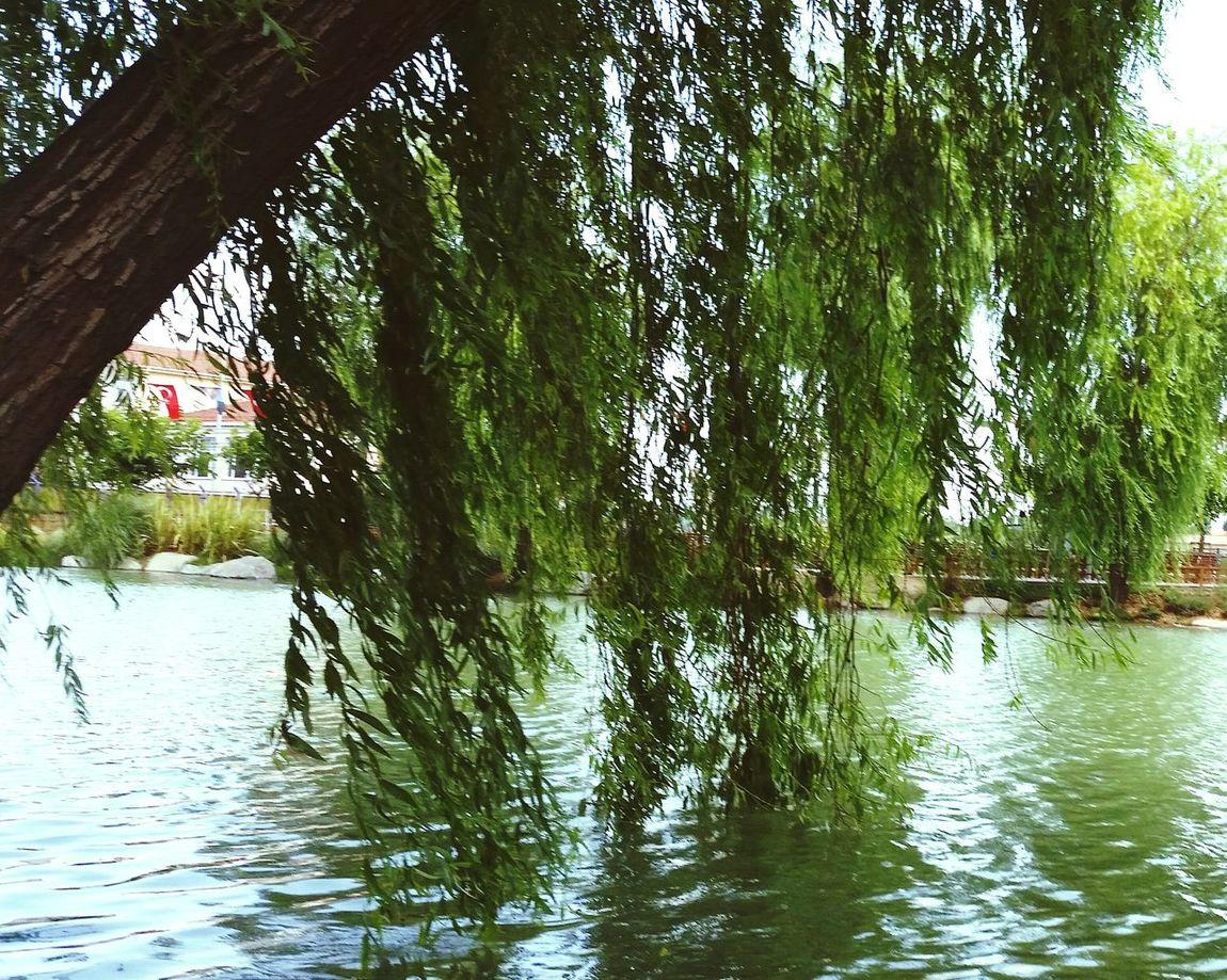 Golet Relaxing Istanbul City Hello World Manzara EyeEm Gallery Landscape EyeEmBestPics Photo Of The Day Photography