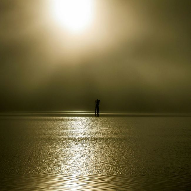Fog Early Morning Sunrise Bay Low Tide Coos Bay Jewell Photography Photography North Bend Photooftheday
