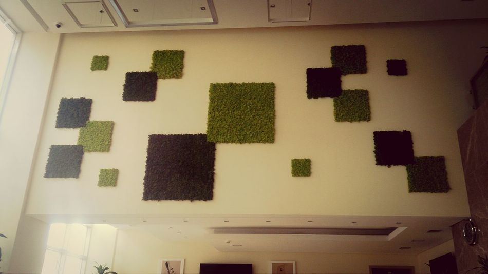 Hanging grass on the wall! :)