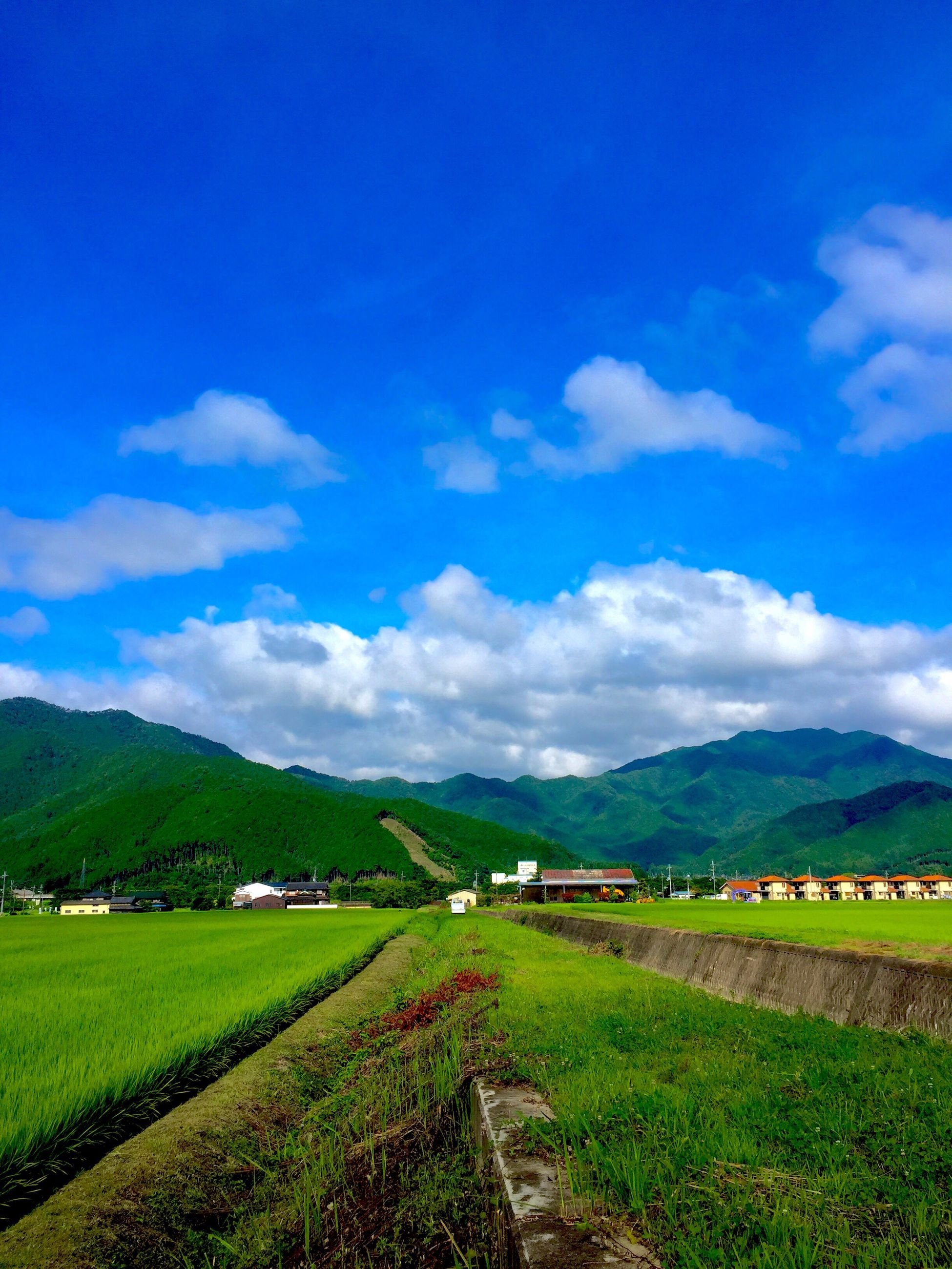 landscape, mountain, sky, grass, tranquil scene, field, tranquility, scenics, mountain range, beauty in nature, rural scene, blue, nature, agriculture, cloud, cloud - sky, green color, grassy, countryside, non-urban scene, idyllic, day, outdoors, remote, no people, growth, village, hill, horizon over land, green, cloudy