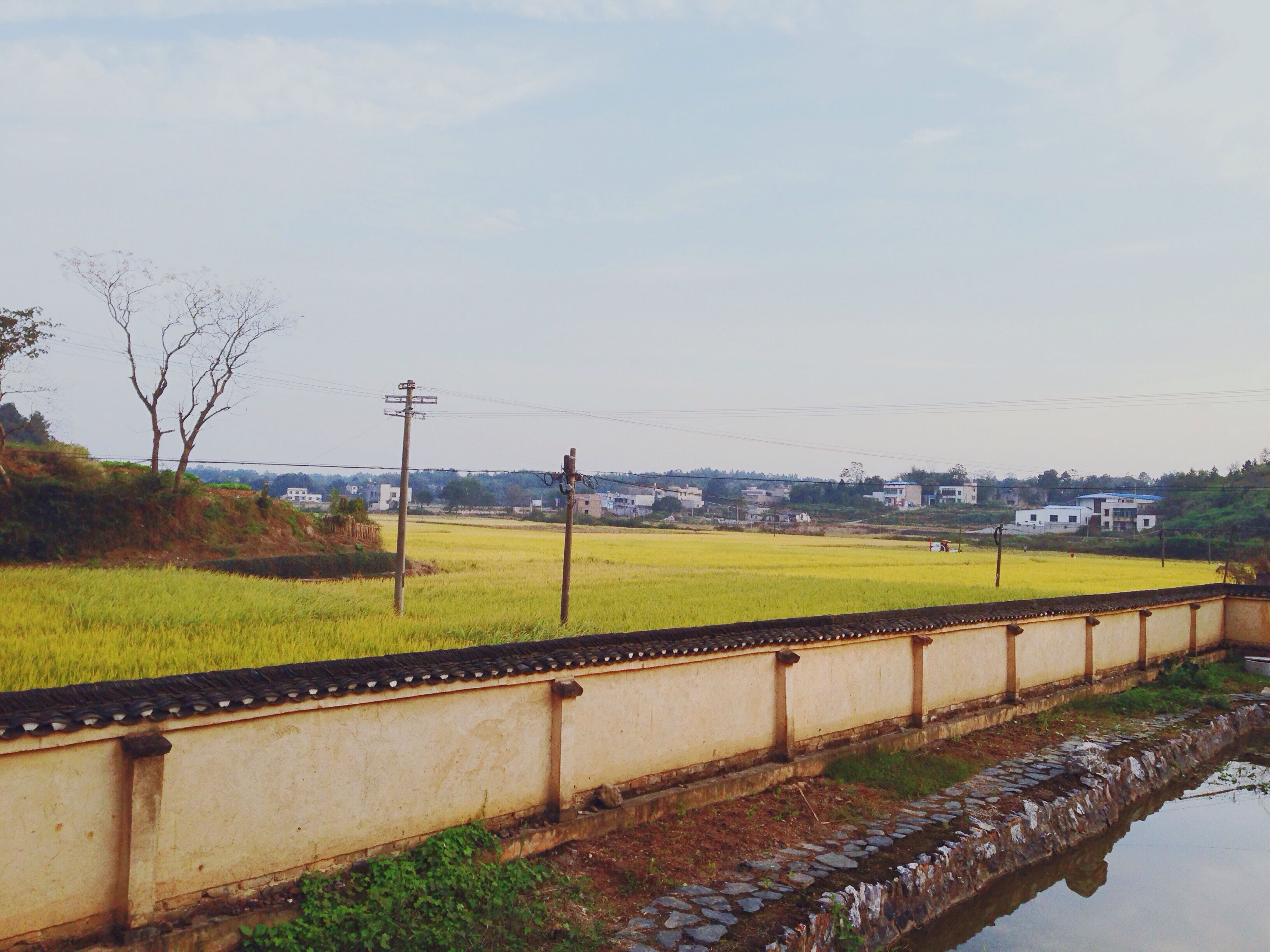 sky, field, power line, electricity pylon, landscape, tranquil scene, connection, rural scene, tranquility, nature, tree, growth, agriculture, railroad track, electricity, beauty in nature, green color, grass, scenics, fuel and power generation