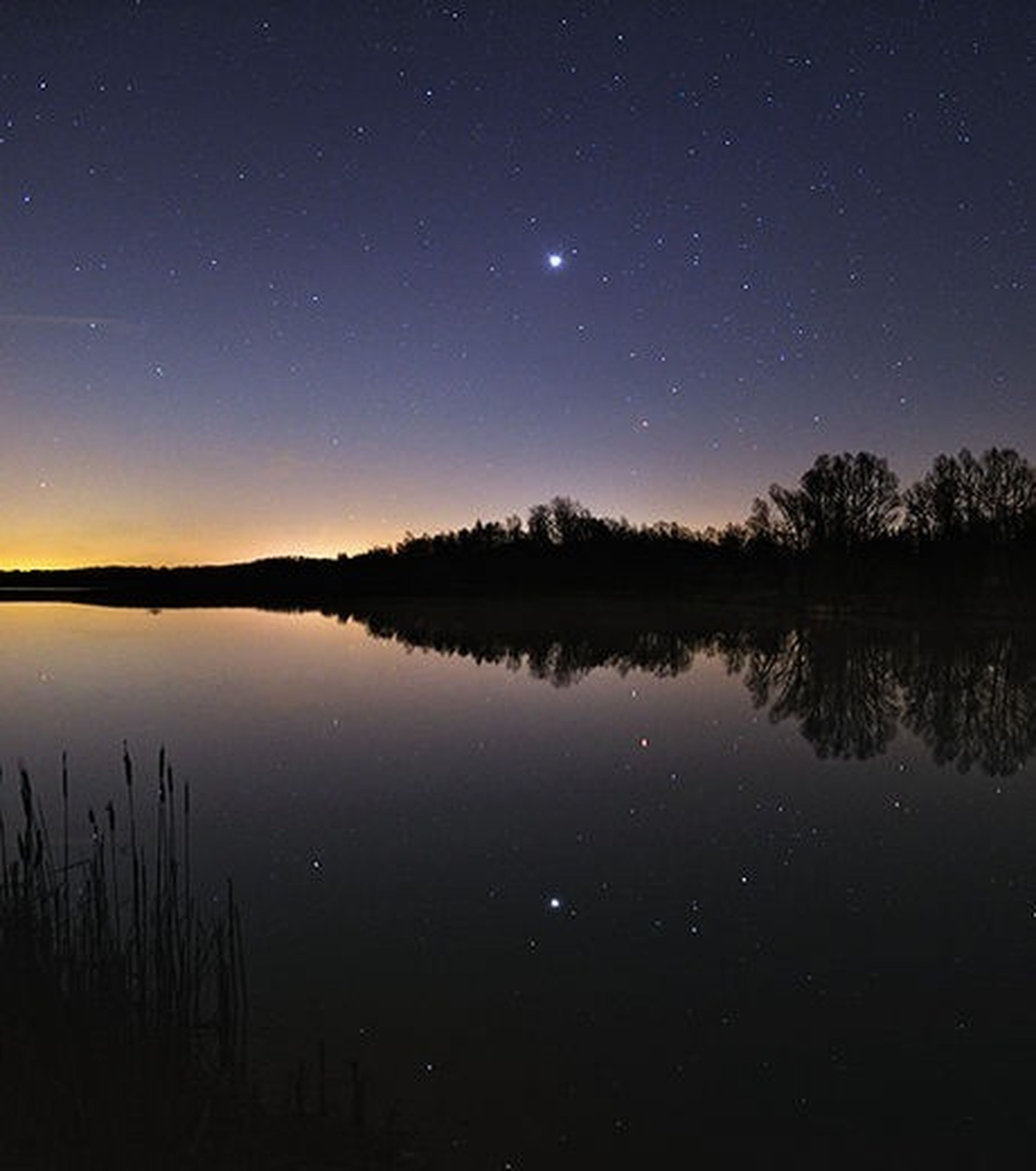 tranquil scene, scenics, tranquility, night, beauty in nature, reflection, lake, water, star - space, nature, sky, idyllic, astronomy, silhouette, star field, majestic, tree, clear sky, standing water, moon