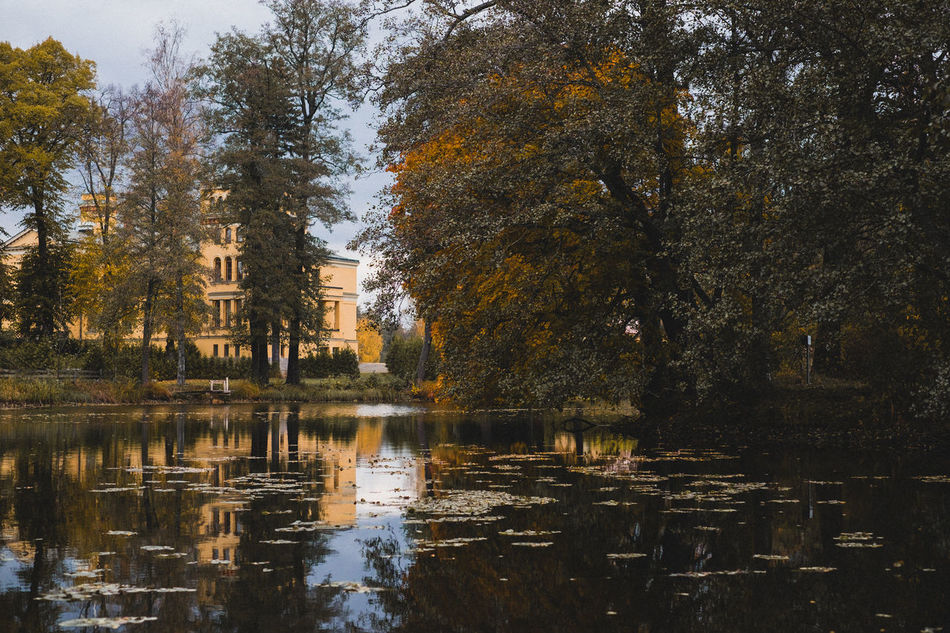 Autumn Beauty In Nature Hometown Lake Nature Outdoors Reflection Sweden Tranquility Tree Water