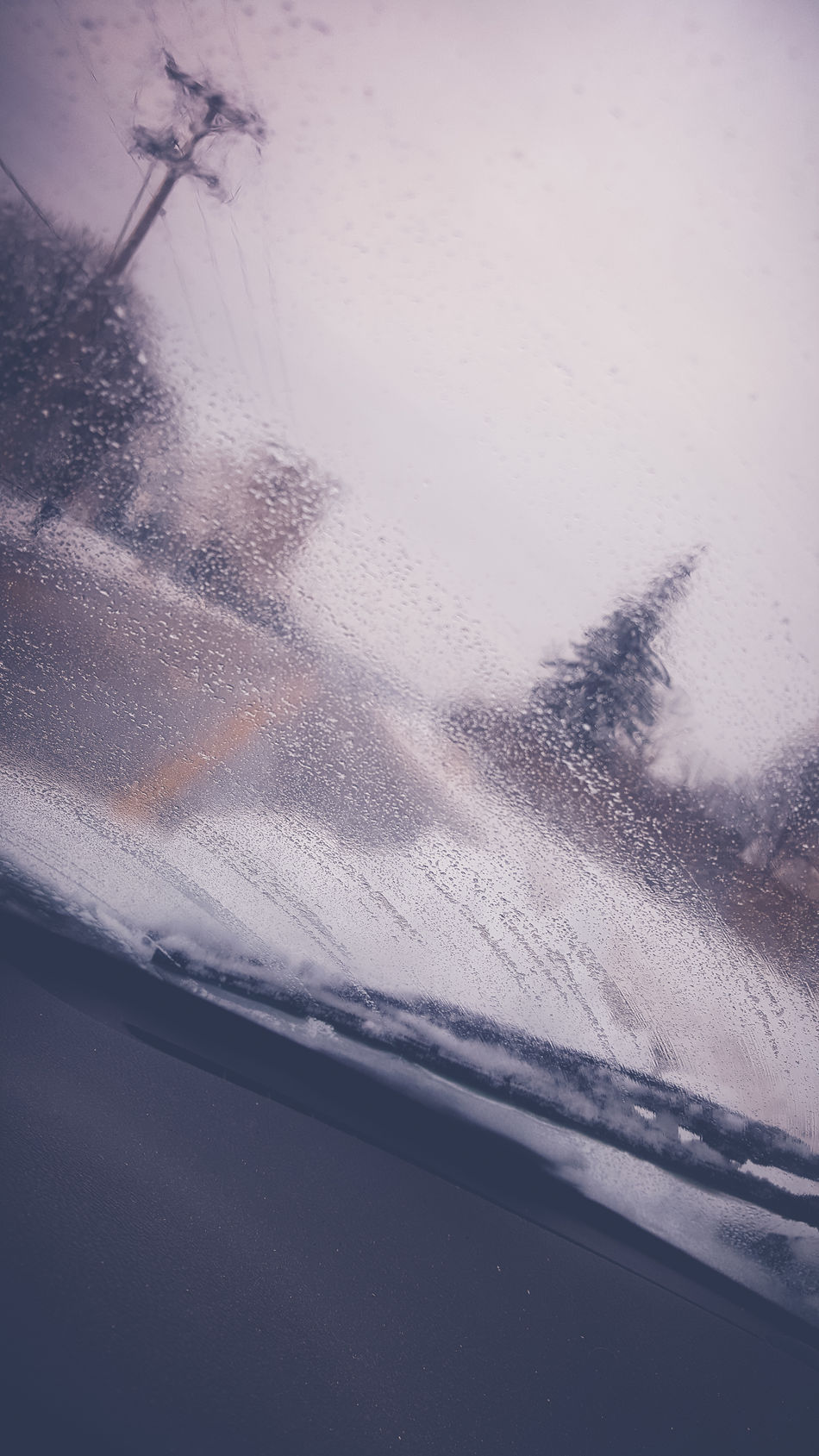 Dashcam Driving Impaired Impaired Driving Sight Impaired Vision Impairment On The Move On The Road Snow Day Snowy Telephone Pole Trees Windshield Windshield Wipers Winter Winter Wonderland